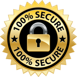 secure-badge | Betachon Freight Auditing